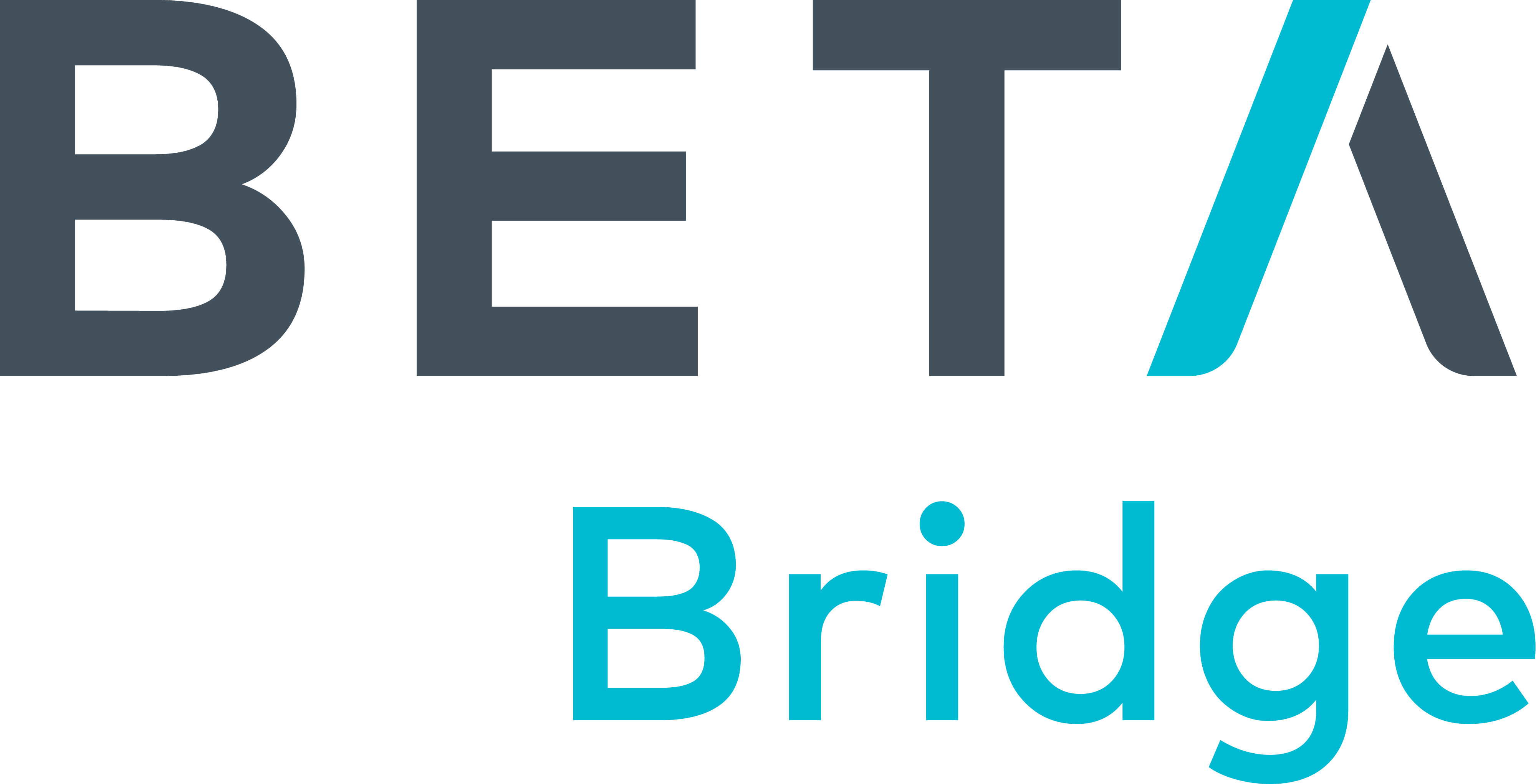BETA.MN Bridge Logo